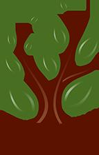 stein-yeshiva-logo-footer
